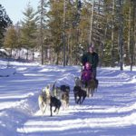 rangeley-lakes-trails-center-sled-dogs.jpg